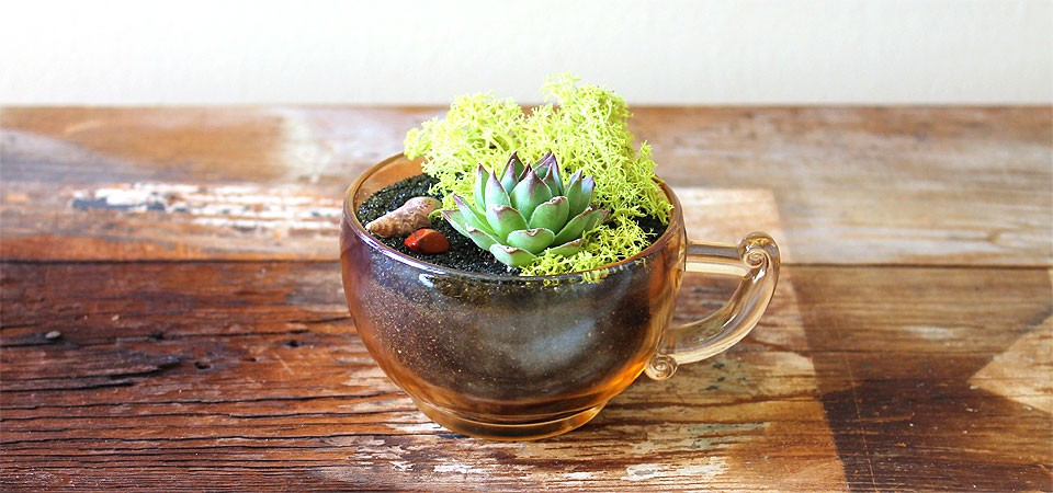 Amber-Glass Teacup