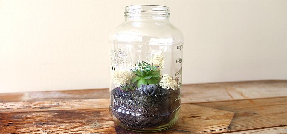 Atlas Rhino Jar