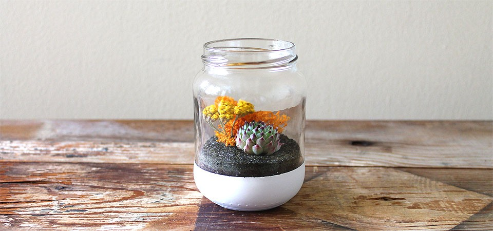 Fall Colors Terrarium