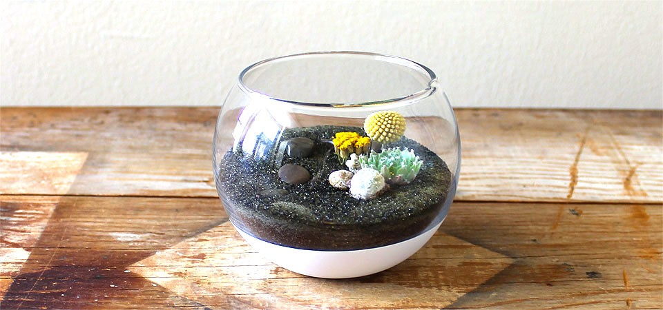 Small Paint Dipped Fish Bowl Terrarium