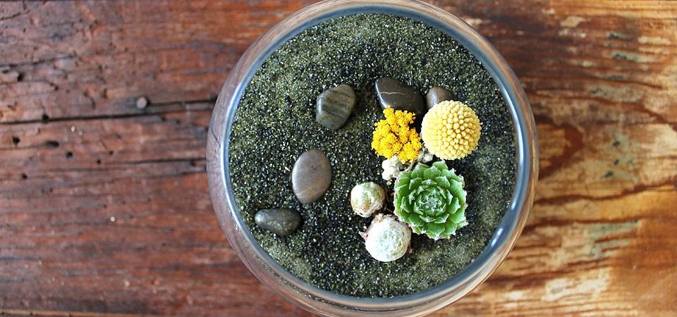 Small Paint Dipped Fish Bowl Terrarium