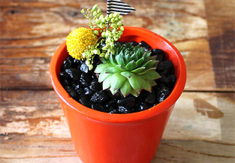 Orange Magnet Planter
