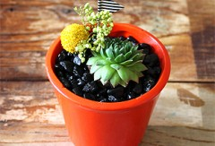 Orange Magnet Planter {Two Available}