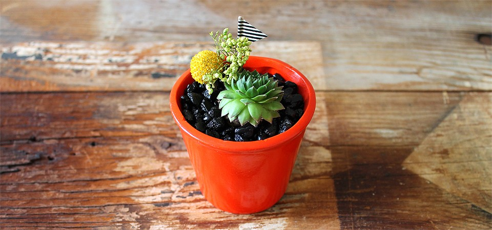 Orange Magnet Planter