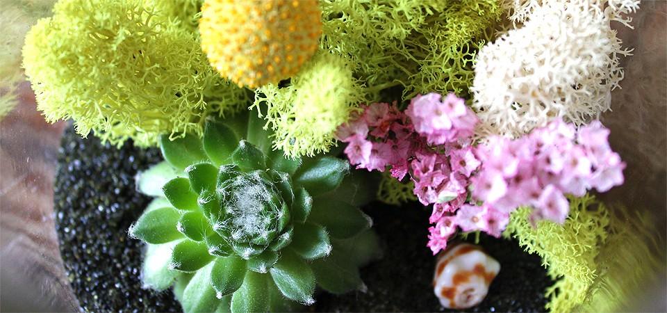 Classic Spring Blossom Terrarium