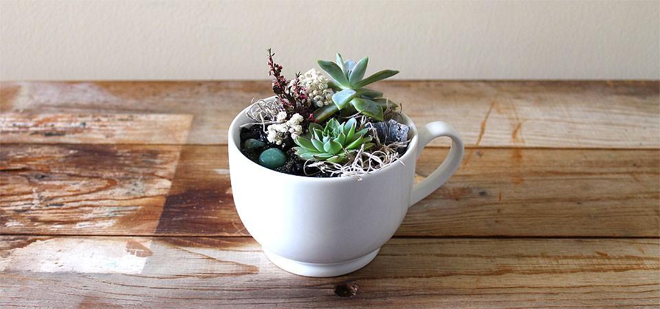 Milky Coffee Cup Arrangement