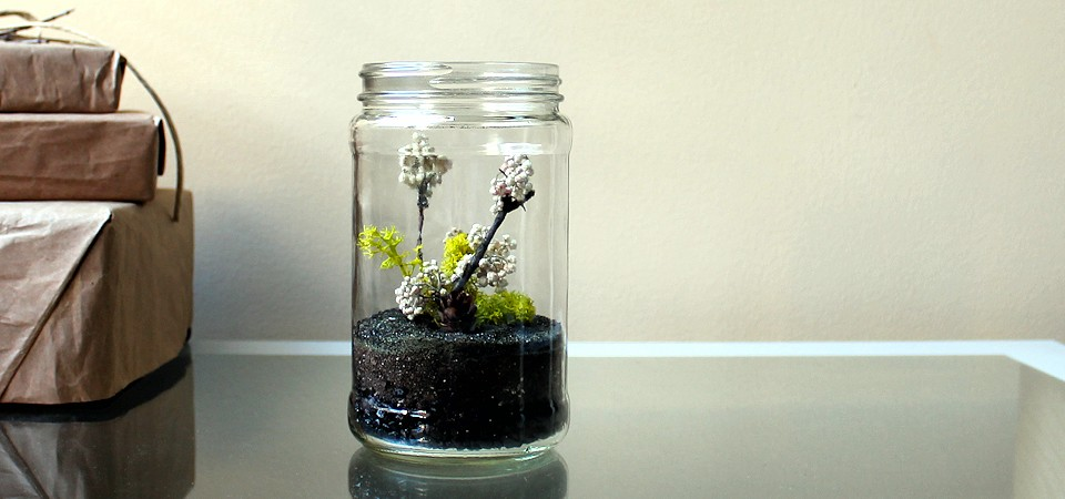 Carefree Rice Flower Terrarium